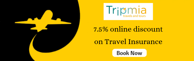 cheap travel insurance company
